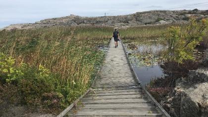 Floating boardwalk.