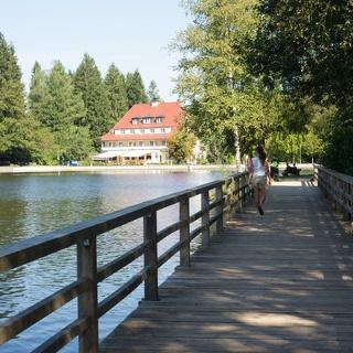 Waldsee Lindenberg