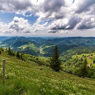 Der Belchen bietet bei guter Sicht einen faszinierenden Rundumblick bis gar zur Schweizer Alpenkette.
