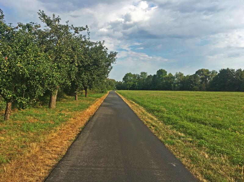 Radweg im Taubertal