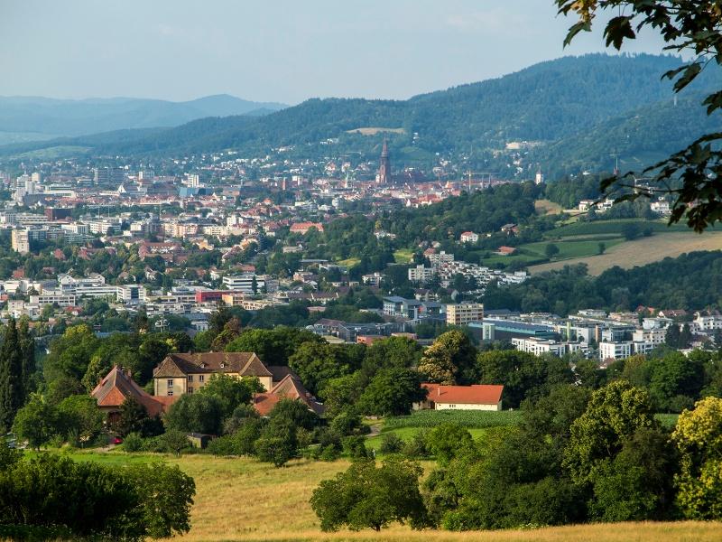 Vom Markgräflerland nach Freiburg