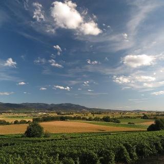 Blick vom Krozinger Berg