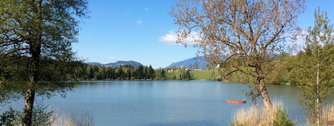 Maltschacher See im Frühling