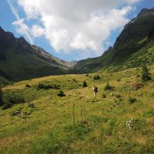 Unterer Abschnitt: Plattenweg in Almwiesen