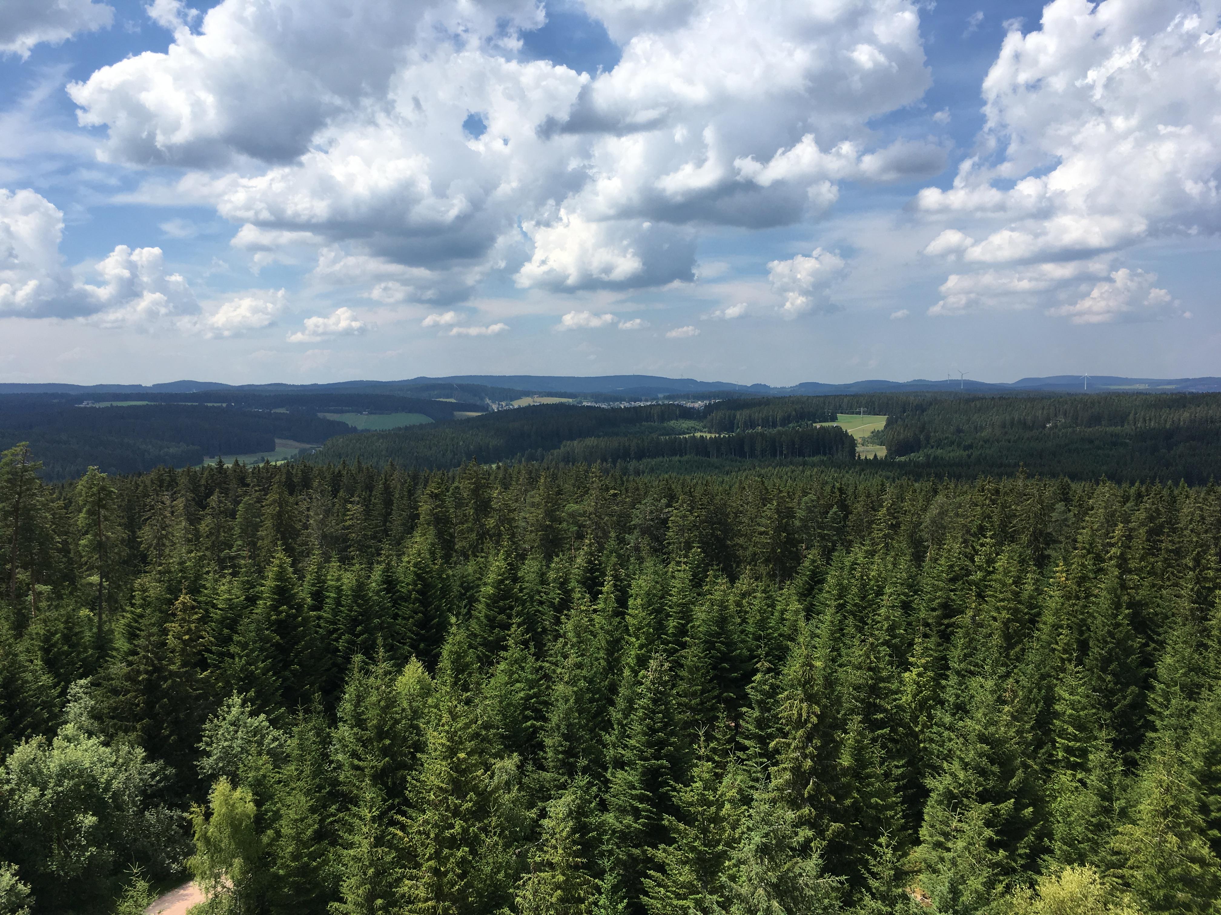 Aussicht Stöcklewaldturm