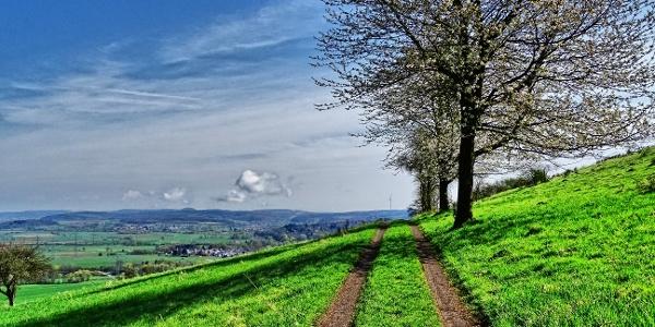 Aussicht vom Altenberg