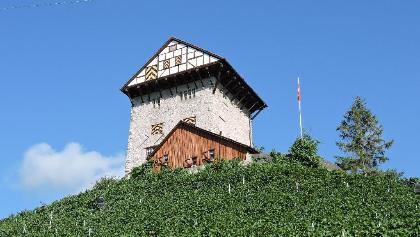 Burg Neu-Altstätten