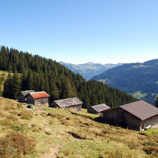 Brand Alpe