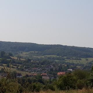 Walsheim