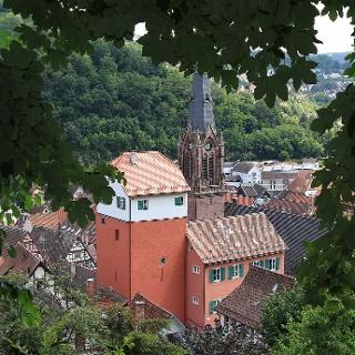Blick auf den Langen und die Stadtkirche in Calw