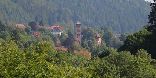 Blick auf das Kloster in Hirsau
