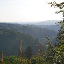 Westerwaldfernblick
