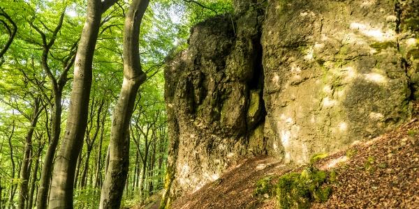 Felsen am Gerolsteiner Felsenpfad