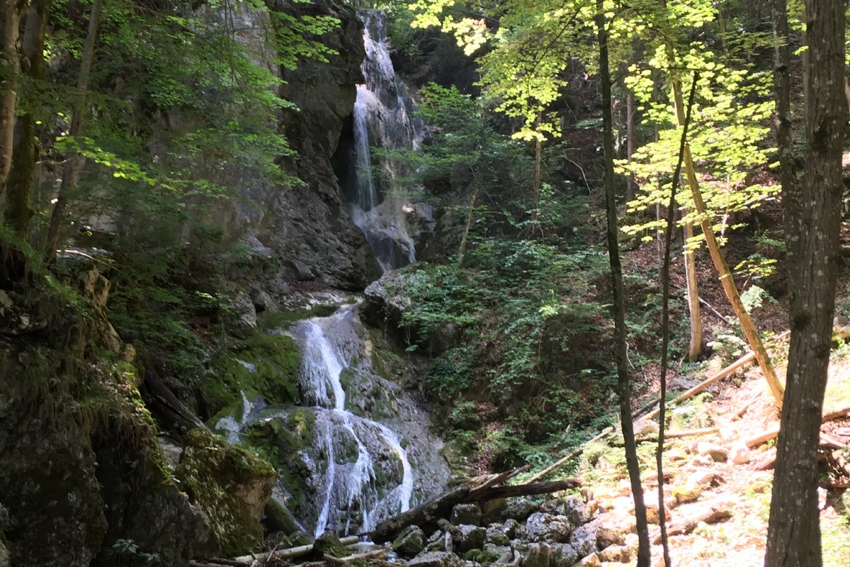 Wasserfall Wolfsschlucht