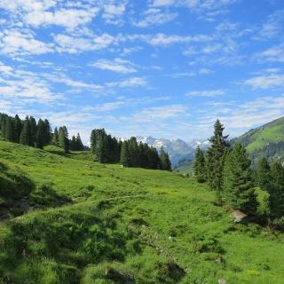 Wanderung ins Salzachtal