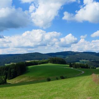 Typische Ausblicke bei einer Schwarzwaldwanderung