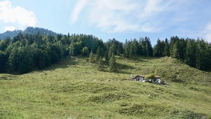 Zwerchenbergalm