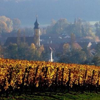 Michelau im Steigerwald