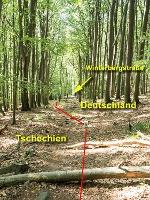 Foto Bild 9: Grenzweg