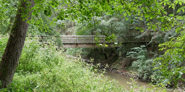 Brücke in der Schwarzachklamm