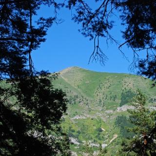 Der Mont Bertrand im Nachmittagslicht