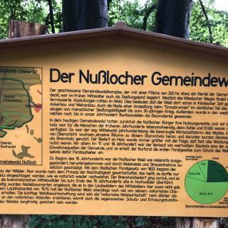 Nußlocher Gemeindewald