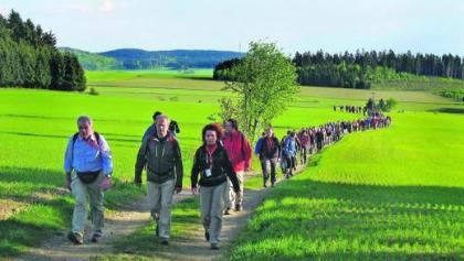 Bei strahlendem Sonnenschein ging's für die Wanderer in Bad Steben los. Kurz vor dem Langesbühl liegt das Feld noch dicht beieinander.
