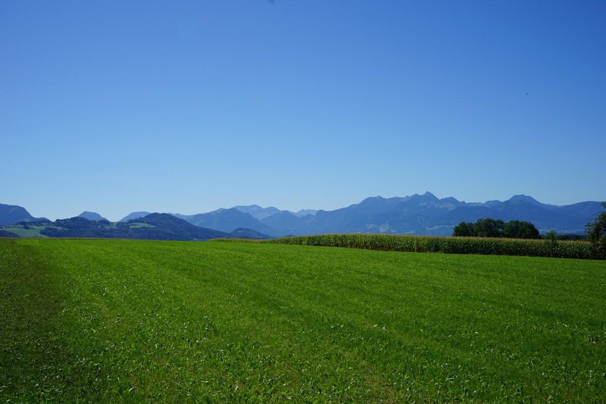 Alpenpanorama vor Petzgersdorf