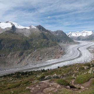 Aletschgletscher vom Bettmerhorn. Für diesen Blick muss man einen Extratag auf der Fiescheralp einlegen