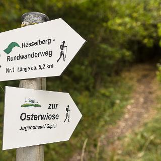Wegweisung der Bergmessweg