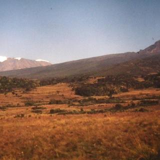 Kibo und Mawenzi am Weg zu den Horombo Huts