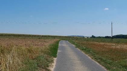 Durch die Felder nach Saargemünd