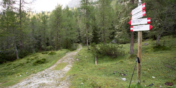 Si abbandona la strafa forestale e si prende il sentiero