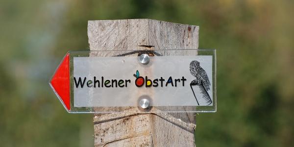 """Wegekennzeichnung """"Wehlener OstArt"""""""
