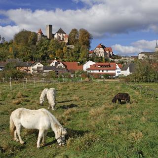 Blick vom Schwarzbachtal auf Burg Neidenstein