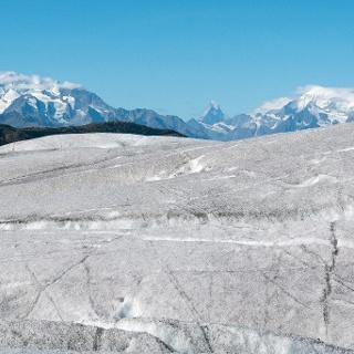 Auf dem Aletschgletscher. Im Hintergrund Dom, Matterhorn und Weißhorn