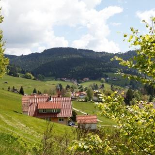Obertal Buhlbach