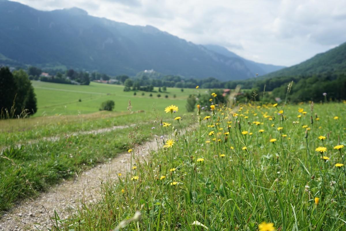 Blick zurück nach Aschau