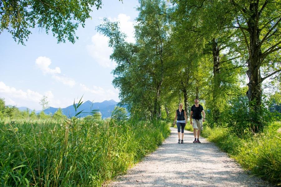 Wandern am Chiemseerundweg