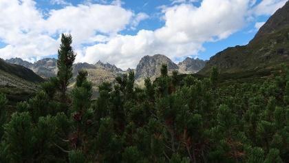 Der Blick zurück auf die Hochmadererspitze