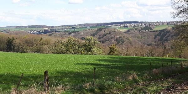 Hofweiler