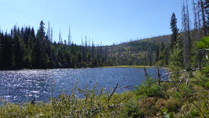 Jezero Laka - Lackensee