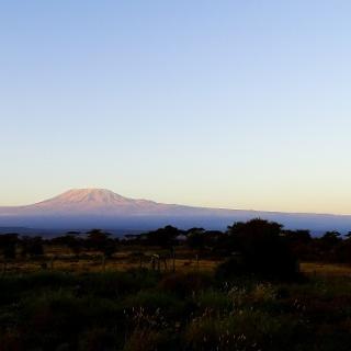 Kilimandscharo vom Amboseli Nationalpark aus