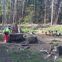 Rohrsteigbrunnen