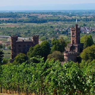 Ausblick auf Schloss Ortenberg