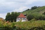 Foto Hoflößnitz