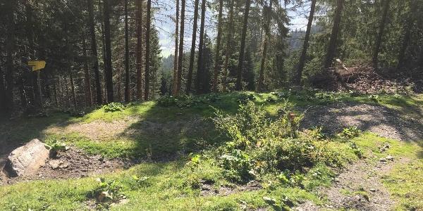 """1.50 km - Fahrweg überqueren und am Wegweiser geradeaus über Wiesenpfad bergab (""""Fundner Heimalm"""")."""