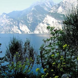 Blick vom Monte Brione  zum Gardasee