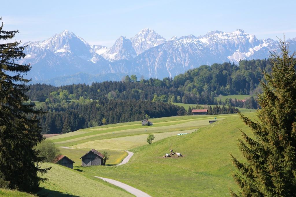 Einzigartiges Alpenpanorama (Wilheilm Franke)