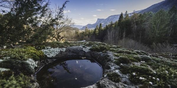 Ein mit Wasser gefüllter, vor Urzeiten durch Menschenhand erschaffener Schalenstein - weit im Hintergrund erhebt sich der markante Gantkofel aus dem Überetsch